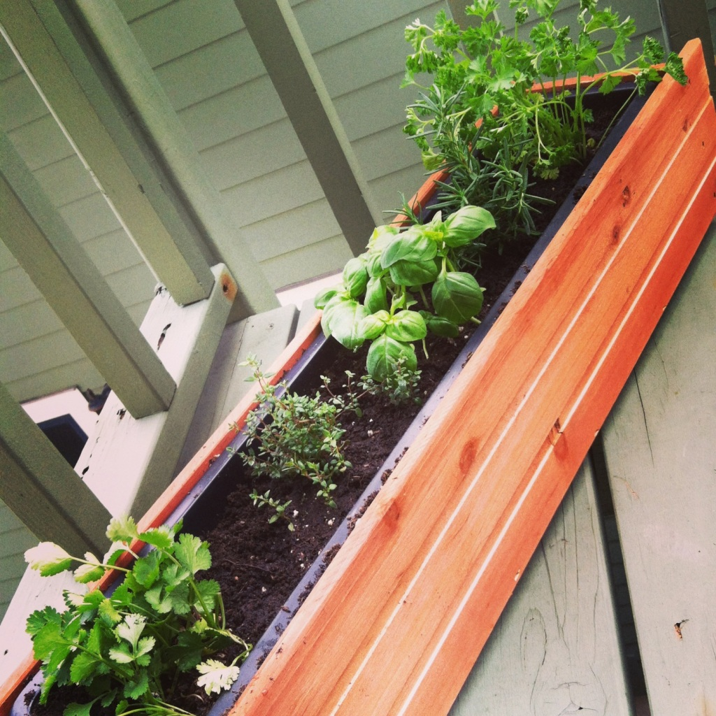 Our new herb garden!